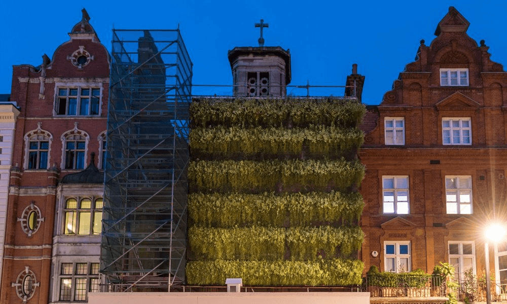 Arup trials 'living wall' scaffolding