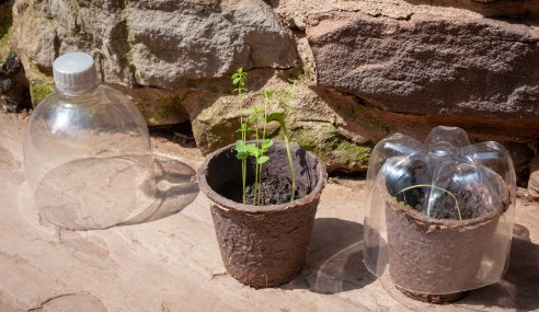 Biodegradability: how is it manufactured?