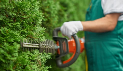 Tips on Starting a Garden Maintenance Business in The UK
