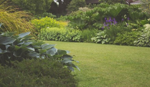 The Crucial Role of Landscaping in Eco-Friendly Home Building