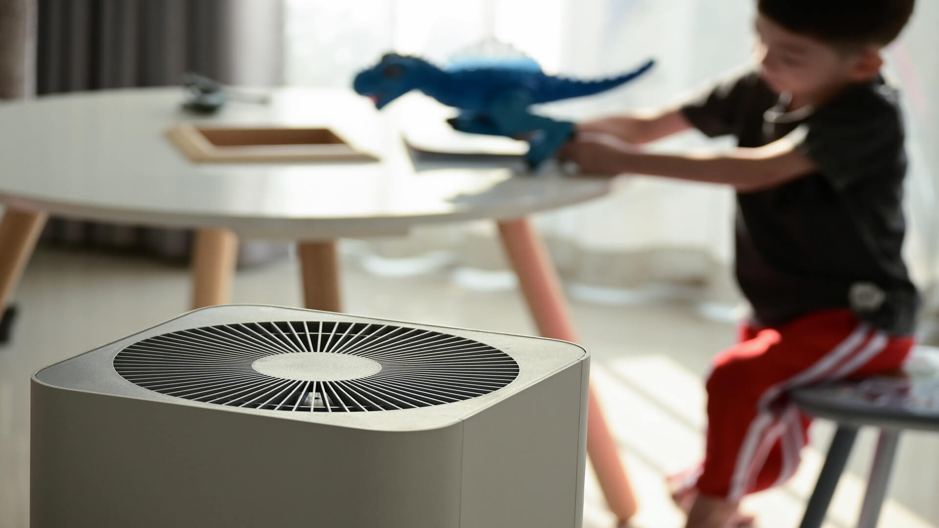 air purifier home