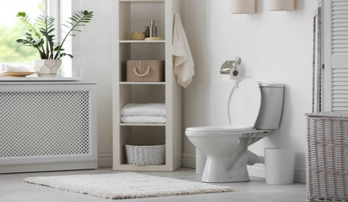 6 Things You Didn't Know About Toilets