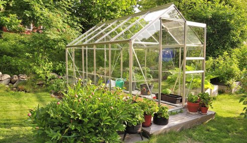 Why Greenhouses Have Become A Popular Trend