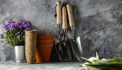 Top Tools That Are Worth Your Investment To Make Your Yard Maintenance Easier