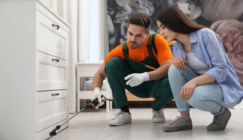 Essential Home Remedies That Will Solve Your Pest Infestation Problems