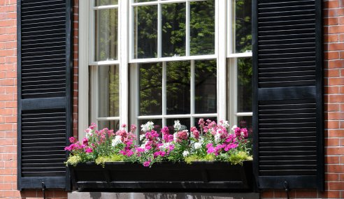 How Often Do You Need to Maintain Your Wooden Sash Windows To Avoid Replacing Them?