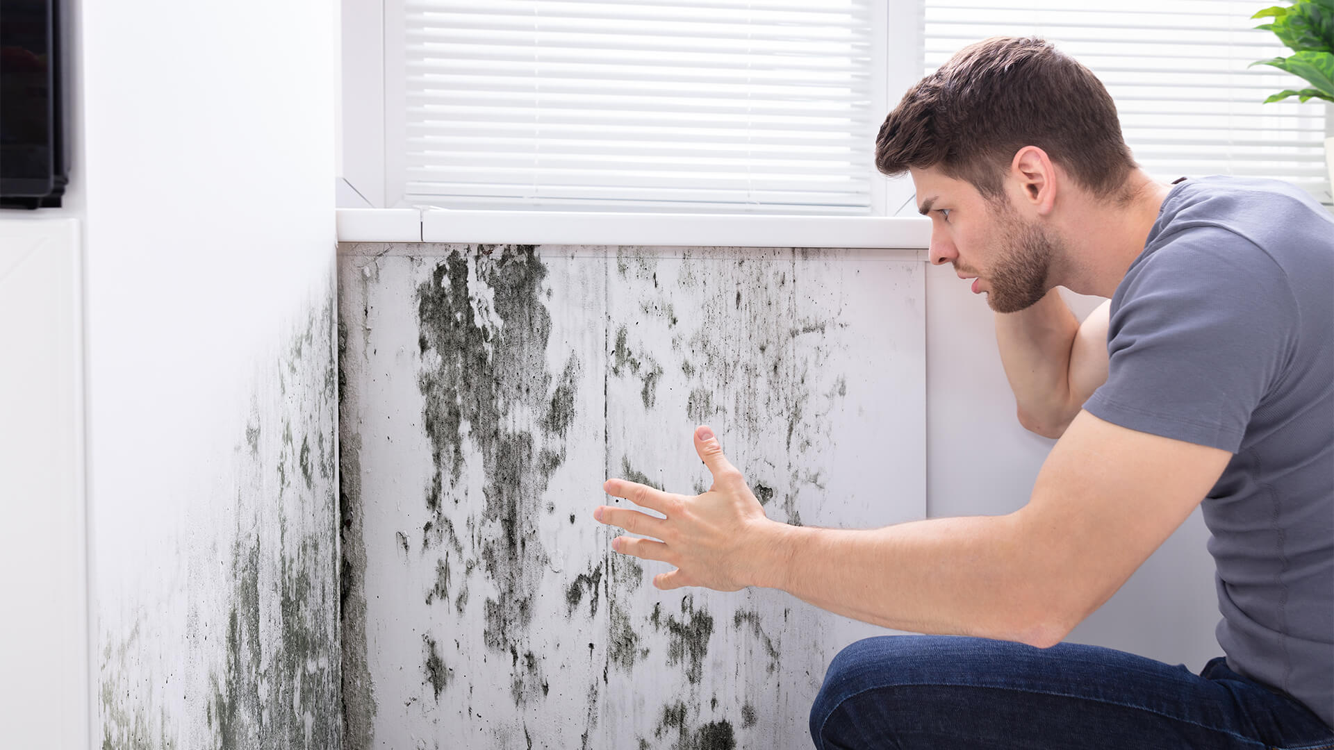 Man looking at mould on the wall. He is on the phone.